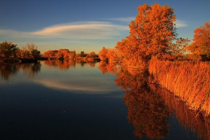 Удивительные осенние цвета, становятся еще более неправдоподобными в красных лучах садящегося за горизонт вечернего солнца.