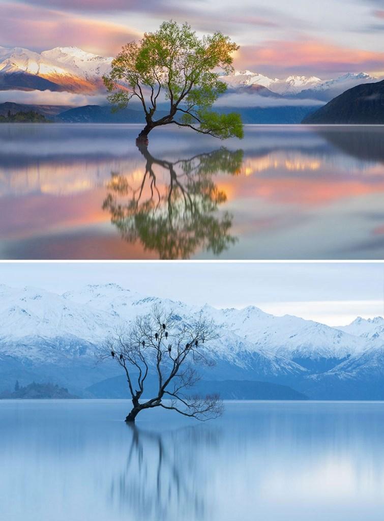Озеро Уанака, Новая Зеландия