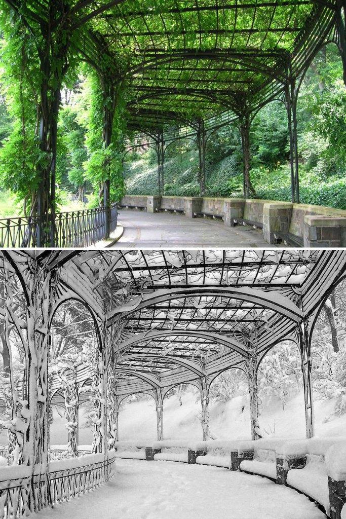 Пергола, Зимний сад, Центральный парк, Нью-Йорк, США