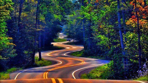 Дорога Норспорт летом