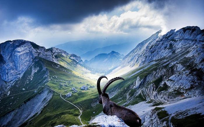 Великолепные природные просторы. Швейцария.