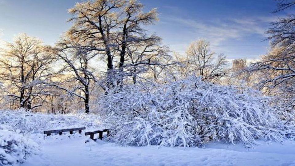 Прелесть зимы 02