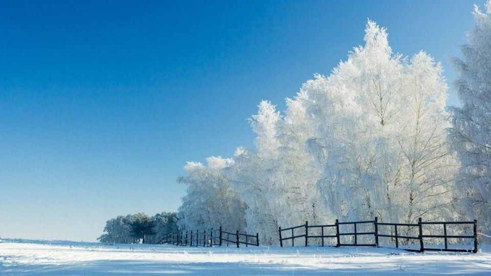 Прелесть зимы 06