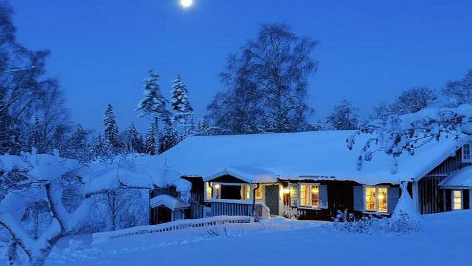 Прелесть зимы 09